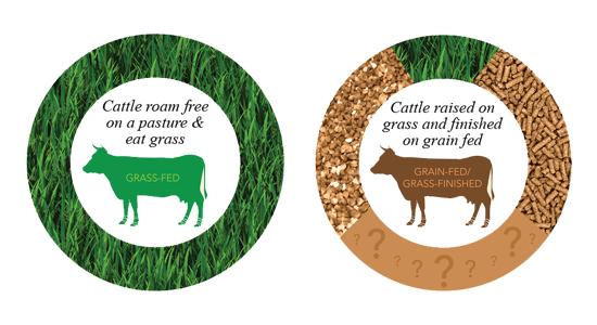 Grass Vs. Grain